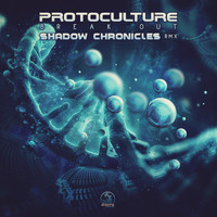 Protoculture - Break Out (Shadow Chronicles Remix)