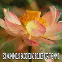 Healing Yoga Meditation Music Consort - 63 Harmonious Background Sounds For The Mind