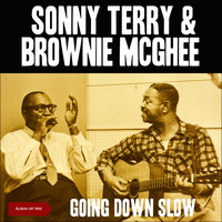 Sonny Terry & Brownie McGhee - Going Down Slow (Album of 1952 [Explicit])
