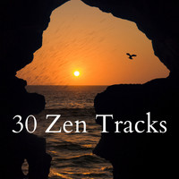 Nature Sounds - 30 Zen Tracks