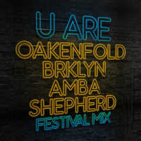 Paul Oakenfold - U Are (Festival Mix)