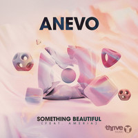 Anevo - Something Beautiful