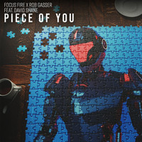 Focus Fire & Rob Gasser (Feat. David Shane) - Piece of You