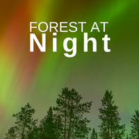Deep Forest - Forest at Night: Relaxing Nature Night Sounds