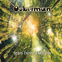 Ooberman - Tears From A Willow