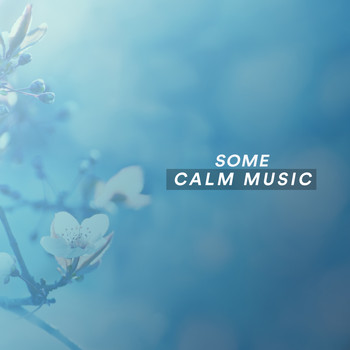 Various Artists - Some Calm Music