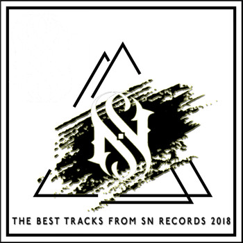 Various Artists - The Best Tracks From SN Records 2018