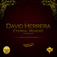 David Herrera - Eternal Memory