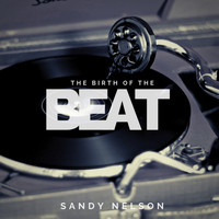 Sandy Nelson - The Birth of the Beat