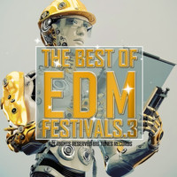 Various Artists - The Best Of EDM Festivals.3