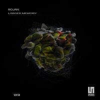 Rojan - Larger Memory