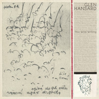 Glen Hansard - This Wild Willing