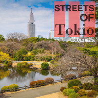 Various Artists - Streets Of - Tokio, Vol. 2 (Okonomiyaki For The Belly, Deep House For The Soul)