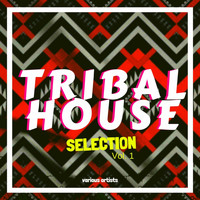Various Artists - Tribal House Selection, Vol. 1
