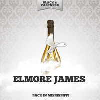 Elmore James - Back In Mississippi