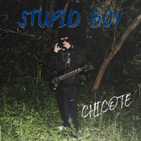Chicote - Stupid Boy (Explicit)