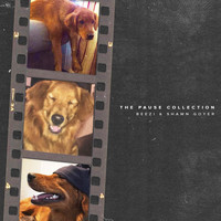 Beezi  &  Shawn Goyer - The Pause Collection (Explicit)