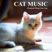 Cat Music, Music For Cats, Music for Pets - Cat Music: Classical Music For Cats, Music For Pets, Background Classical Piano Music For Sleep and The Best Music For Cats