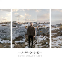 Awolk - Love What's Left