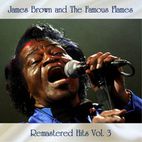 James Brown - Remastered Hits Vol, 3 (All Tracks Remastered)