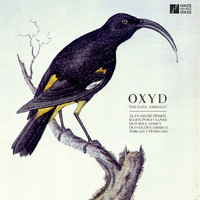 Oxyd - The Lost Animals