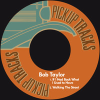 Bob Taylor - If I Had Back What I Used to Have