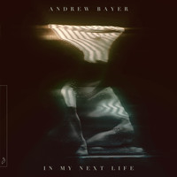 Andrew Bayer - In My Next Life