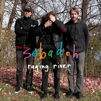 Sebadoh - raging river
