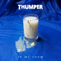 Thumper - In My Room (Radio Edit)