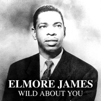 Elmore James - Wild About You