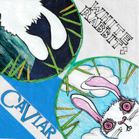White Rabbit - Caviar