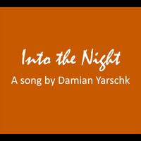 Damian Yarschk - Into the Night
