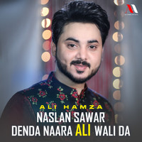 Moula Mera Ve Ghar Howay (2018)   Ali Hamza   MP3 Downloads