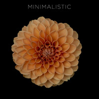 Various Artists - Minimalistic