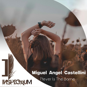 Miguel Angel Castellini - Never Is The Same