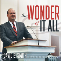 David Smith - The Wonder of It All