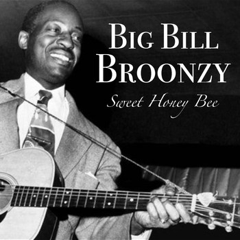 Big Bill Broonzy - Sweet Honey Bee
