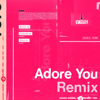 Jessie Ware - Adore You (HAAi Remix)