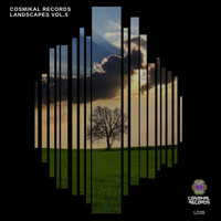 Various Artists - Cosmikal Records Landscapes, Vol. 5