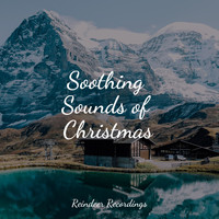 Calming Music Academy, Entspannungsmusik, Sleep Sounds of Nature - 25 Peaceful Tracks for a Smooth Ambience