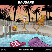 Baugard - Not Not the One