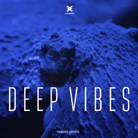 Various Artists - Deep Vibes