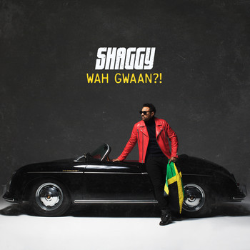 Shaggy - When She Loves Me