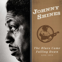 Johnny Shines - The Blues Came Falling Down (Live 1973)