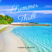 Various Artist - Summer Thrill