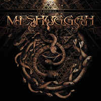 Meshuggah - The Ophidian Trek (Live)