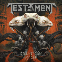 Testament - Brotherhood of the Snake (Explicit)