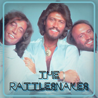 Bee Gees - The Rattlesnakes