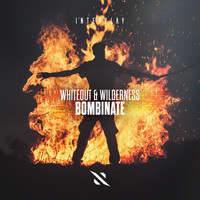 Whiteout & Wilderness - Bombinate