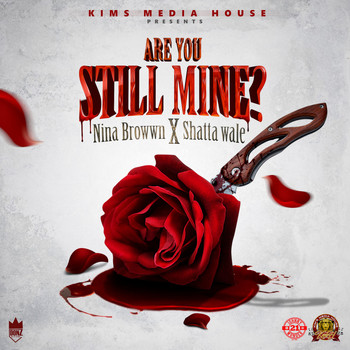 Nina Browwn, Shatta Wale - Are You Still Mine